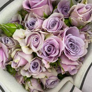 Rose Spray Light Purple - Kenya